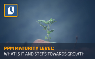 PPM Maturity Level: What Is It and Next Steps Towards Growth