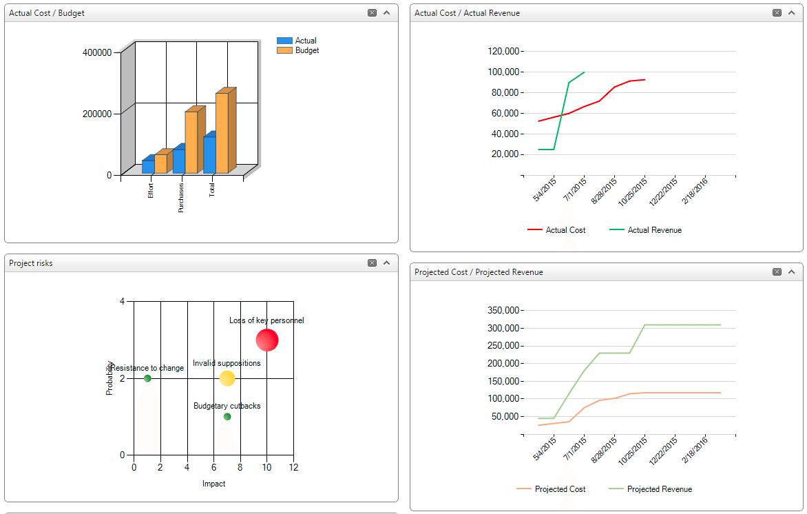 grapghs, diagrams, actual cost/budget, actual cost/revenue, project risks, project cost/projected revenue