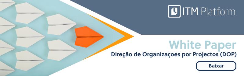 Baixar White paper Direção de Organizaçaoes por Projectos, ITM Platform